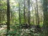 Fox Trail - Photo 14