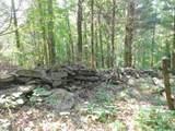 Fox Trail - Photo 15