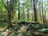 Fox Trail - Photo 16
