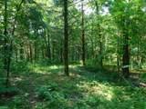 Fox Trail - Photo 18