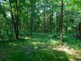 Fox Trail - Photo 19