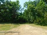 Fox Trail - Photo 2