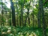 Fox Trail - Photo 20