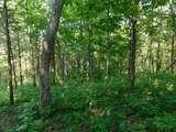 Fox Trail - Photo 21