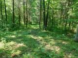 Fox Trail - Photo 25