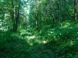 Fox Trail - Photo 26
