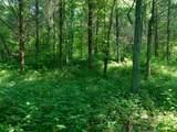 Fox Trail - Photo 27