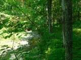 Fox Trail - Photo 28