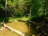 Fox Trail - Photo 30