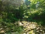 Fox Trail - Photo 31