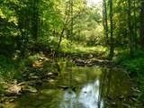 Fox Trail - Photo 32