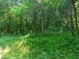Fox Trail - Photo 33