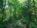 Fox Trail - Photo 7