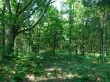 Fox Trail - Photo 8