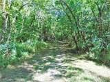 Brush Creek Rd - Photo 49