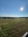 9.6 Acres Violet Road - Photo 6
