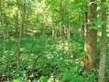 Brush Creek Rd - Photo 38