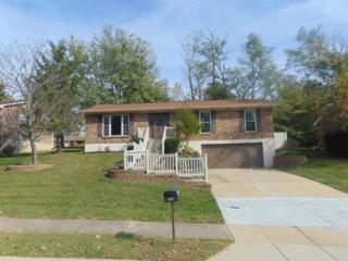 844 Rogers Road, Villa Hills, KY 41017 (MLS #504590) :: Apex Realty Group
