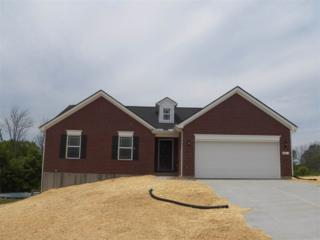 10646 Sinclair 430GL, Independence, KY 41051 (MLS #504814) :: Apex Realty Group