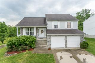 4050 Richardson Road, Independence, KY 41051 (MLS #504815) :: Apex Realty Group