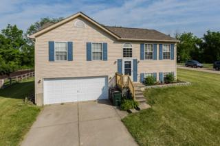 5086 Christopher Drive, Independence, KY 41051 (MLS #504832) :: Apex Realty Group