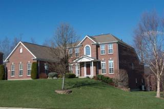 10664 Turcotte Court, Union, KY 41091 (MLS #504877) :: Apex Realty Group