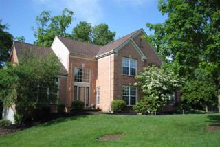 1094 Bold Forbes Court, Union, KY 41091 (MLS #504905) :: Apex Realty Group