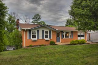 928 Don Victor, Independence, KY 41051 (MLS #505008) :: Apex Realty Group