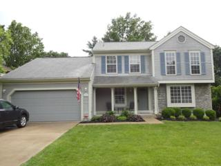 149 Lookout Farm Drive, Crestview Hills, KY 41017 (MLS #505013) :: Apex Realty Group