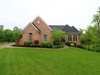 51 Swarthmore Drive, Edgewood, KY 41017 (MLS #504166) :: Apex Realty Group