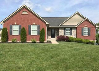 10648 Williamswoods Drive, Independence, KY 41051 (MLS #504822) :: Apex Realty Group