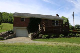 667 Poplar Thicket Road, Alexandria, KY 41001 (MLS #504884) :: Apex Realty Group