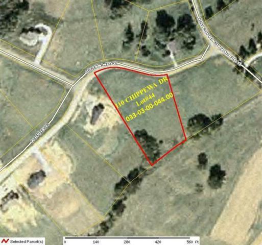 0 Chippewa Drive, Dry Ridge, KY 41035 (MLS #294031) :: Caldwell Realty Group