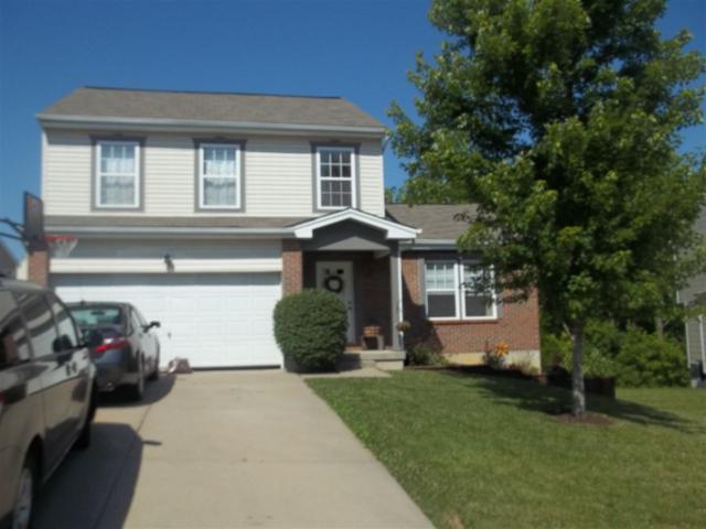 12813 Walnut Creek Drive, Alexandria, KY 41001 (MLS #505771) :: Apex Realty Group