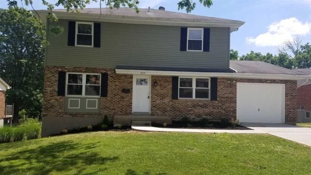 234 Merravay Drive, Florence, KY 41042 (MLS #506149) :: Apex Realty Group