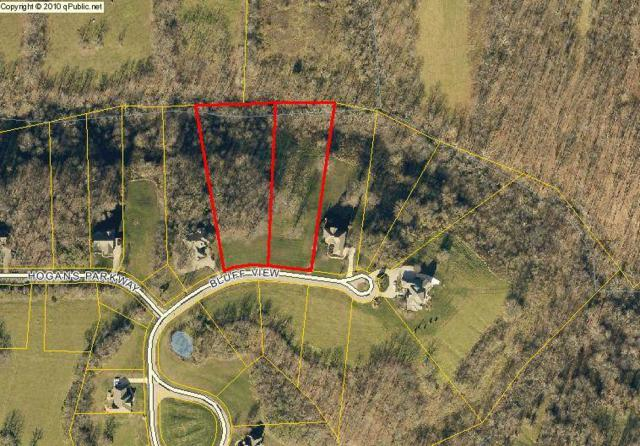 143 & 145 Bluff View, Dry Ridge, KY 41035 (MLS #507088) :: Caldwell Realty Group