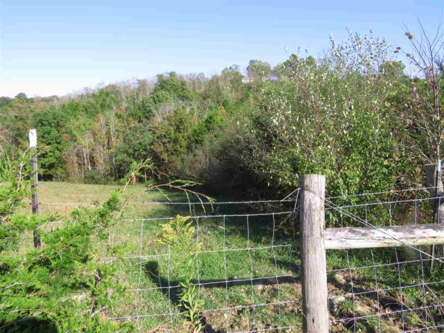 Ky Hwy 22, Falmouth, KY 41040 (MLS #510065) :: Apex Realty Group