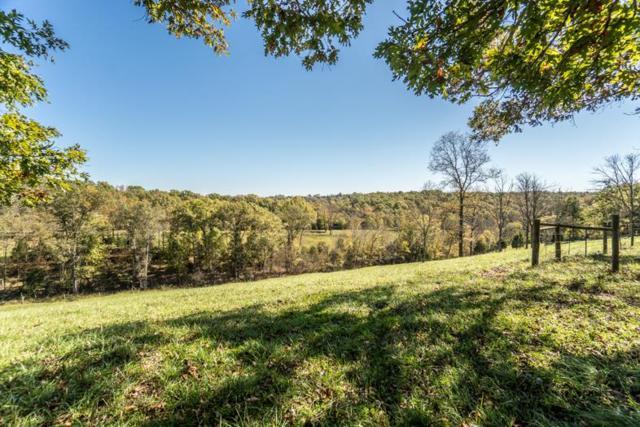 4194 Hogg Ridge, Williamstown, KY 41097 (MLS #510068) :: Apex Realty Group