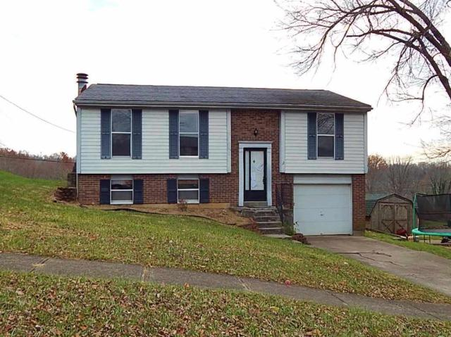 12 Valley View Circle, Alexandria, KY 41001 (MLS #511226) :: Apex Realty Group