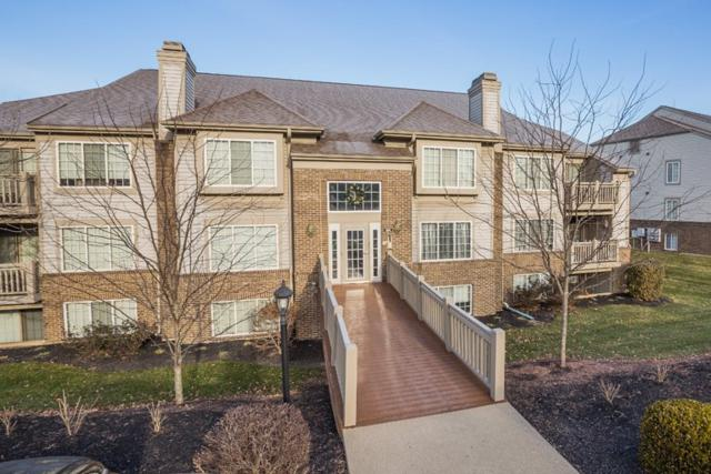 556 Cloverfield #204, Fort Wright, KY 41011 (MLS #511231) :: Apex Realty Group