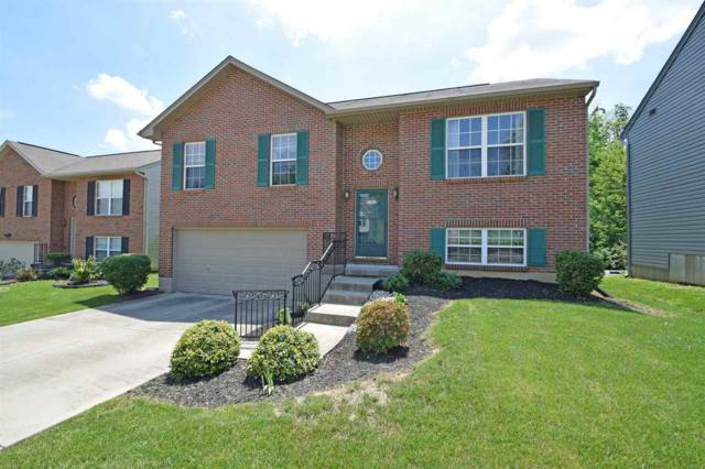 3363 Spruce Tree Drive, Erlanger, KY 41018 (MLS #515849) :: Apex Realty Group