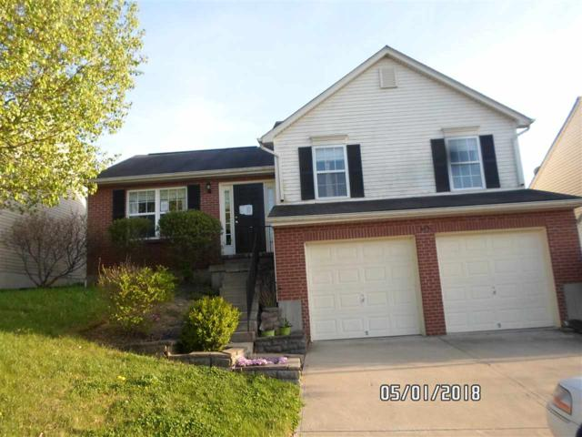 659 Lyonia Drive, Independence, KY 41051 (MLS #515970) :: Apex Realty Group