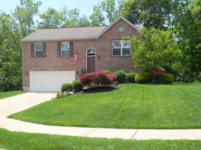 10430 Flintrock Bluff, Independence, KY 41051 (MLS #516041) :: Apex Realty Group