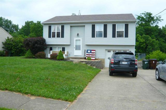 12 Ferndale Court, Fort Mitchell, KY 41017 (MLS #516817) :: Apex Realty Group