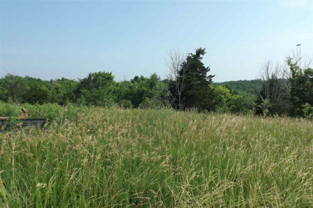 Ky Hwy 22, Falmouth, KY 41040 (MLS #516880) :: Mike Parker Real Estate LLC