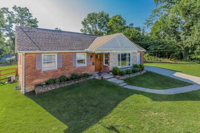 54 Alpine Drive, Fort Thomas, KY 41075 (MLS #517668) :: Apex Realty Group