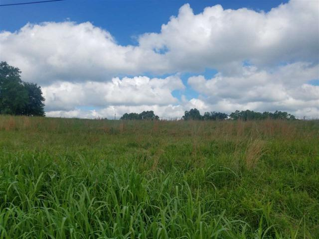 1700-lot 3A Springport Ferry Road, Perry Park, KY 40363 (MLS #517969) :: Mike Parker Real Estate LLC