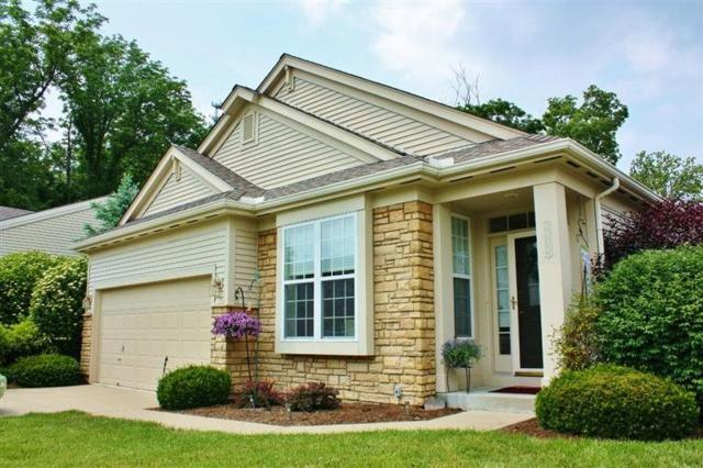 8419 Old World Court, Union, KY 41091 (MLS #518086) :: Apex Realty Group