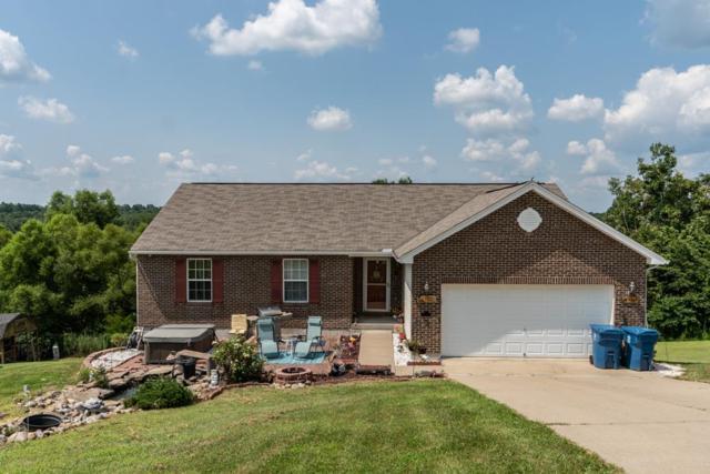 785 Grassy Run, Williamstown, KY 41097 (MLS #519032) :: Mike Parker Real Estate LLC