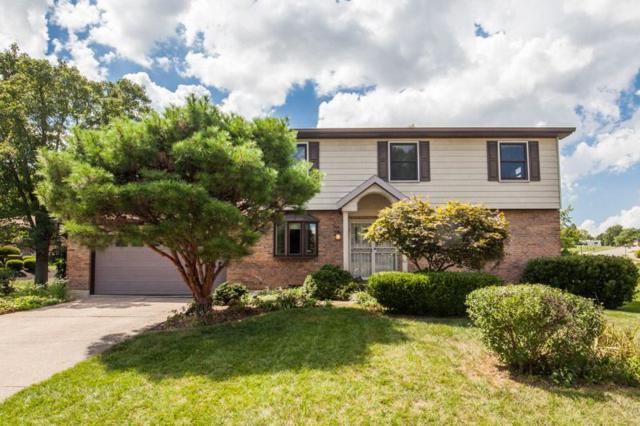 803 Dalewood, Villa Hills, KY 41017 (MLS #519726) :: Mike Parker Real Estate LLC